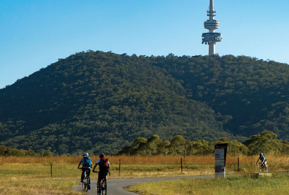 People riding bikes with Telstra Tower in the background
